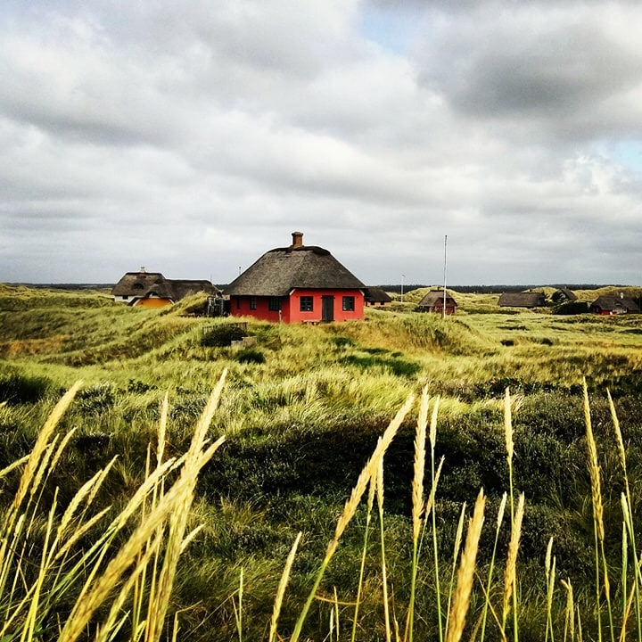 Summer Houses in Denmark